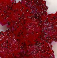 Dragon Fruit Jellies