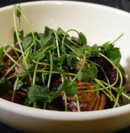 Flyte's Beet Salad