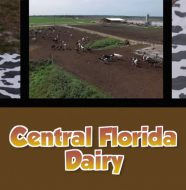 Central Florida Dairy