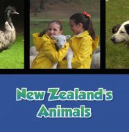 New Zealand's Animals