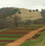 "Beyond the Kitchen - ""The Garden at Monticello"""