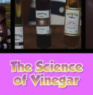 The Science of Vinegar
